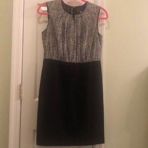 Ann Taylor Loft Knee Length Sleeveless Dress 6P